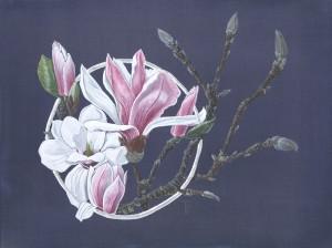 1005 Splendid Magnolia.