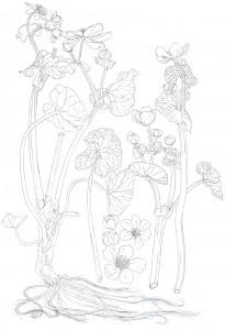 1404ProgressSketch