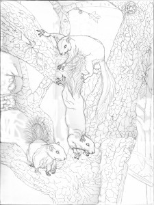 1502 White Squirrels preliminary sketch