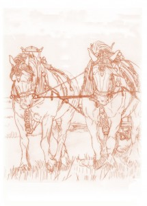 1517a The Art of Ploughing -1 (Black heavy horses)