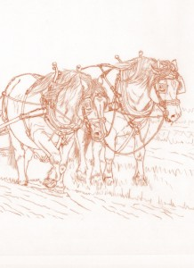 1518 The Art of Ploughing 2 (Sepia print for Box Canvas and Cards)