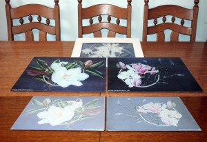 Toughened Glass Chopping Boards - Magnolia Range