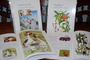 A4 Hardback Coffee Table Books: Petalacious/Feather and Fur