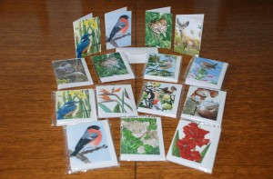 Notelets: 6 cards in a pack with envelopes - for your special little message