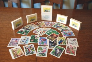 Snap and Name the Bird Educational Card Game for 5 to 12 year olds
