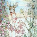 1207 Sentinel Roe Deer Preliminary Sketch