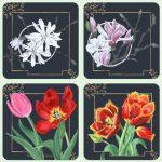 Magnolia and Tulipa coasters
